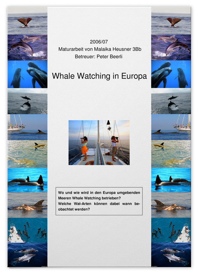 Whale Watching in Europa
