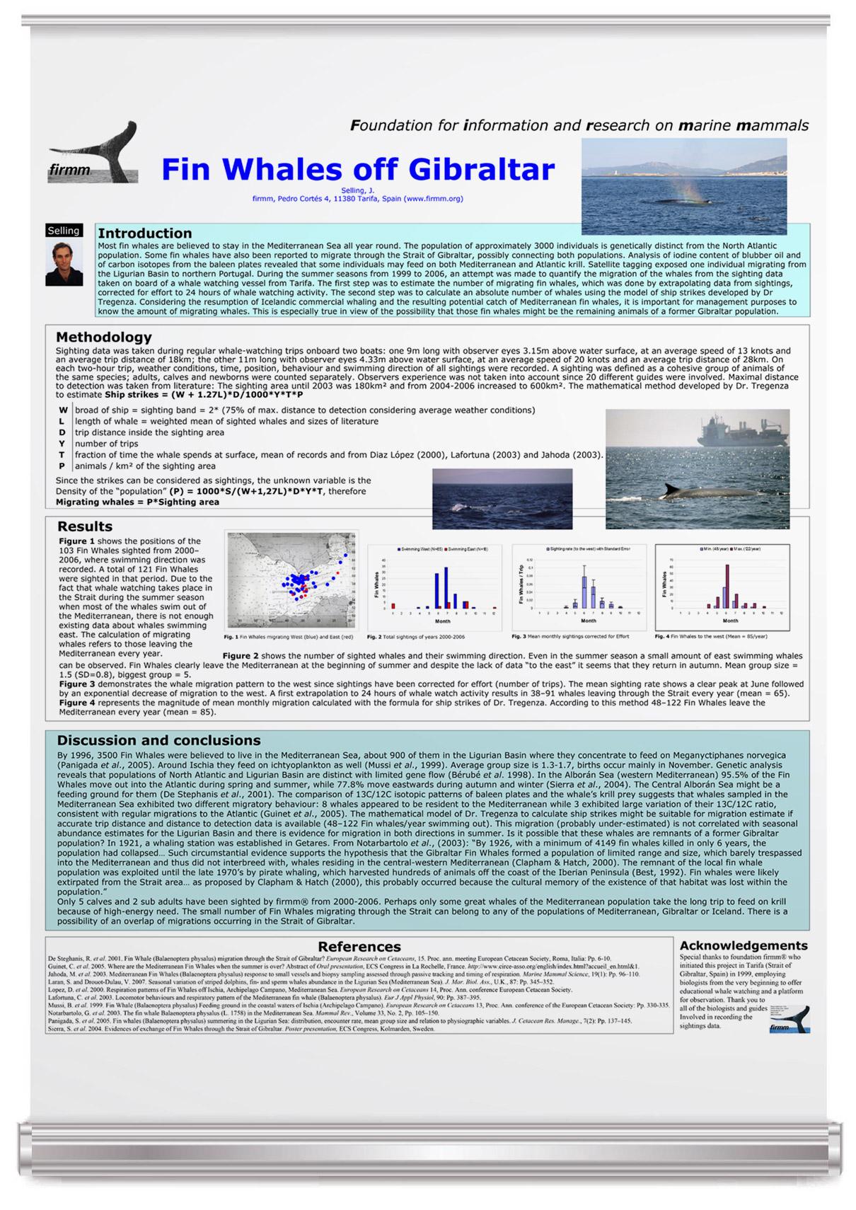 Fin Whales off Gibraltar