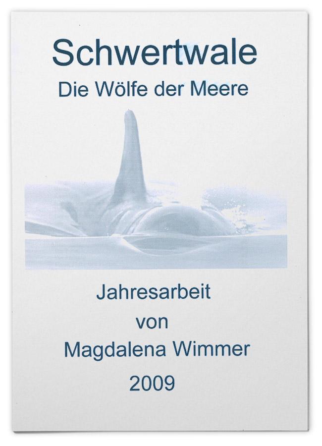 Schwertwale – die Wölfe der Meere