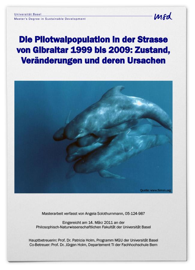 Die Pilotwalpopulation in der Straße von Gibraltar 1999 bis 2009