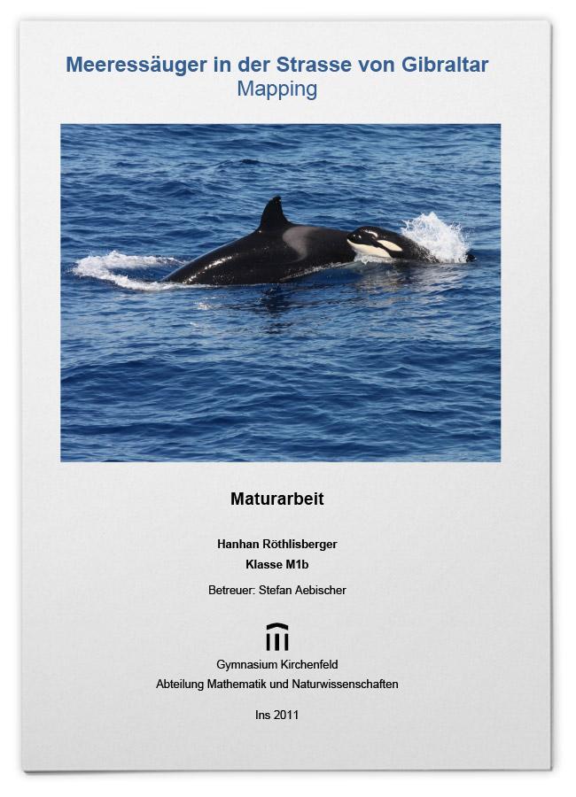 Meeressäuger in der Straße von Gibraltar – Mapping