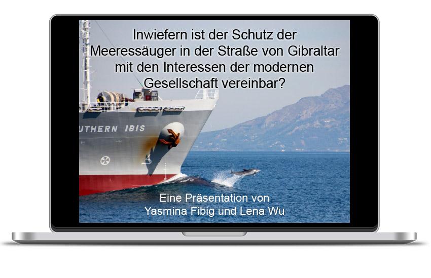 Inwiefern ist der Schutz der Meeressäuger in der Straße von Gibraltar mit den Interessen der modernen Gesellschaft vereinbar?