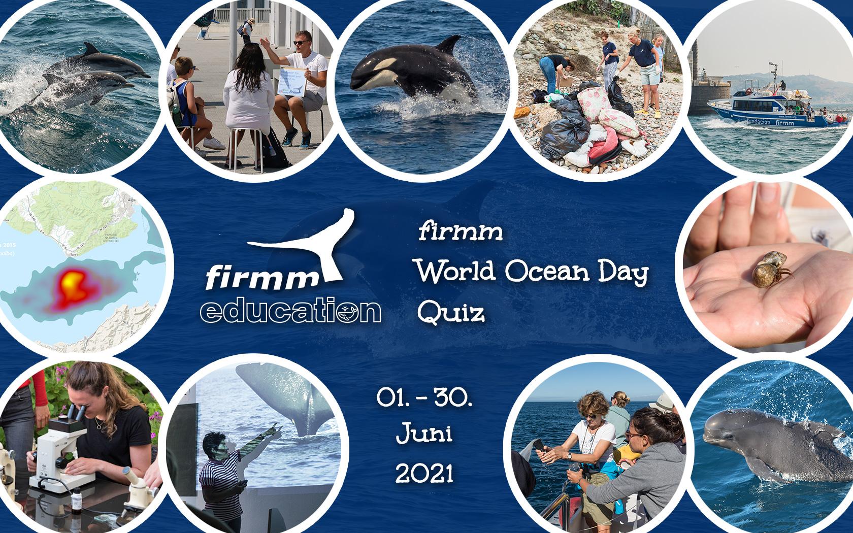 Ankündigung der firmm-Aktion zum World Ocean Day